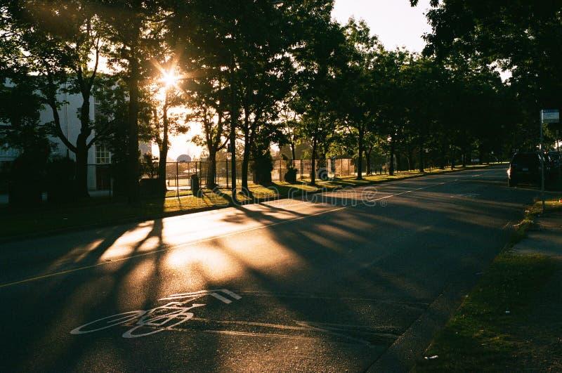 Le lever de soleil de la ruelle de vélo photographie stock libre de droits