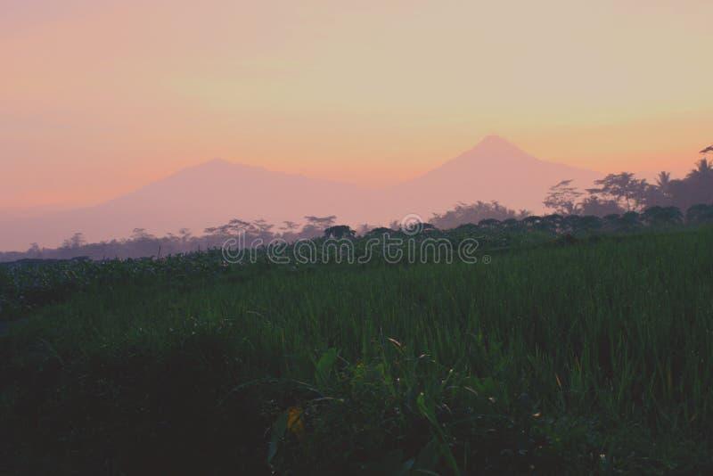 Le lever de soleil de matin voit la beauté de la nature photos libres de droits