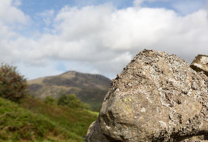 Le lichen a couvert la roche dans le district de lac photos libres de droits