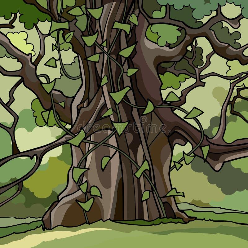Le lierre a couvert le grand arbre de bande dessinée dans une forêt verte illustration libre de droits