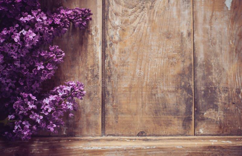 Le lilas fleurit le fond images stock
