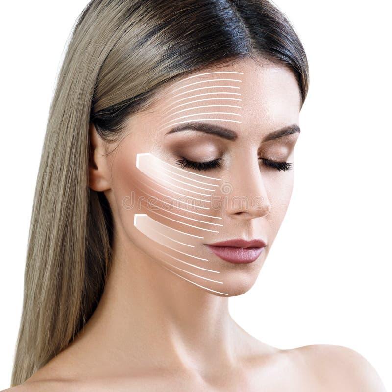 Le linee grafiche mostra l'effetto di sollevamento facciale su pelle immagini stock