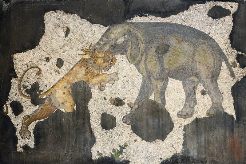Le lion et la mosaïque d'éléphant photographie stock libre de droits