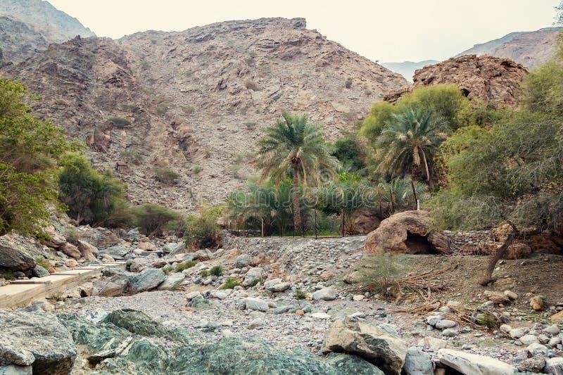 Le lit de la rivière desséché a appelé l'oued en Asie, dans les périphéries de Muscat, l'Oman image libre de droits
