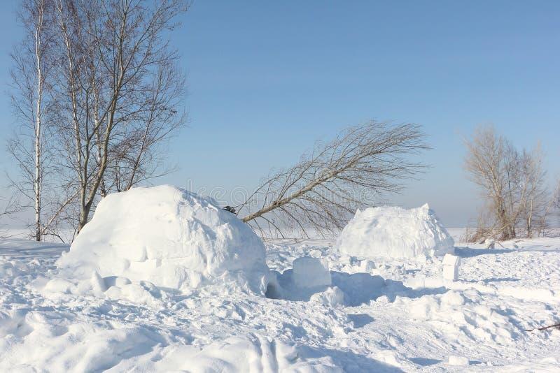 Le logement un igloo sur une clairière de neige photos libres de droits