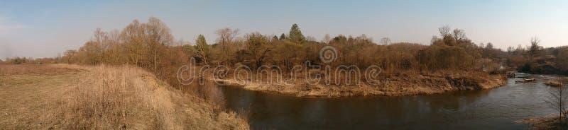 Le long des bouleaux étroits, la rivière photo stock