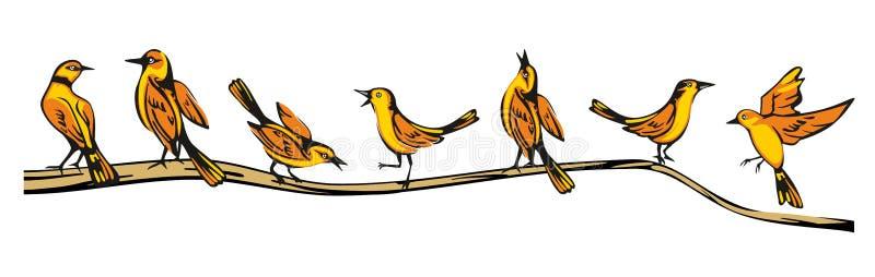 Le loriot d'or était perché dans diverses poses sur une branche Illustration plate de vecteur illustration de vecteur
