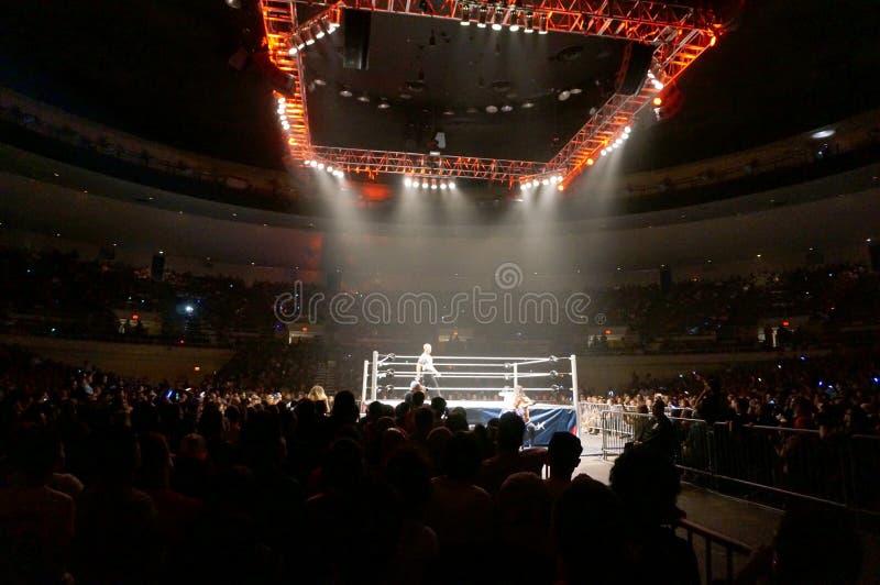 Le lutteur Dolph Ziggler et Baron Corbin de WWE luttent en dehors de du ri image stock