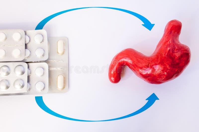 Le médicament dans les pilules dans la boursouflure indiquent le modèle d'estomac Traitement de photo de concept des maladies gas images stock