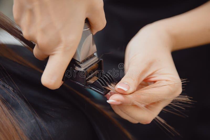 Le maître peigne des cheveux au client pour la procédure de restauration dans le salon photos libres de droits
