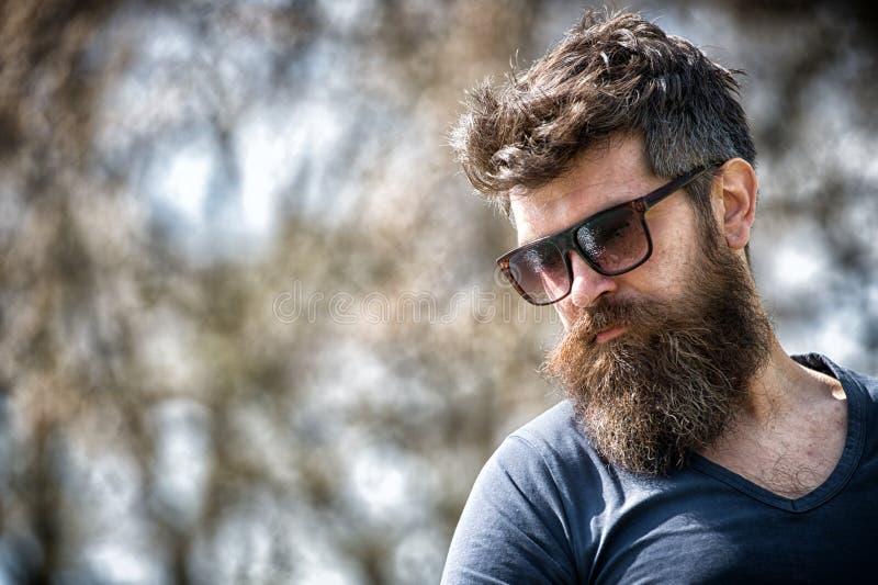 Le macho avec la barbe et la moustache semblent brutal sûr dans des lunettes de soleil Visage strict de type barbu Usage barbu de photo stock