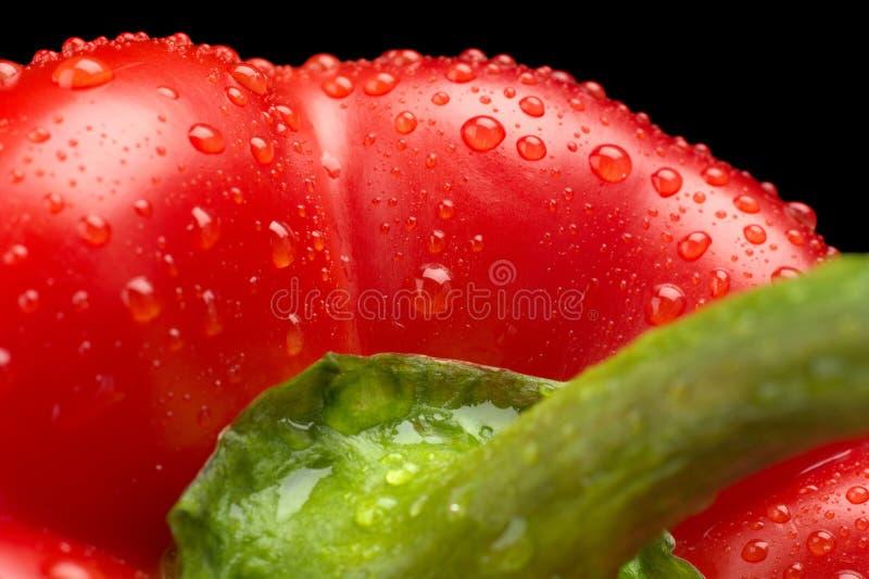 Le macro a coupé le tir du fond rouge de paprika avec des baisses de l'eau photos stock