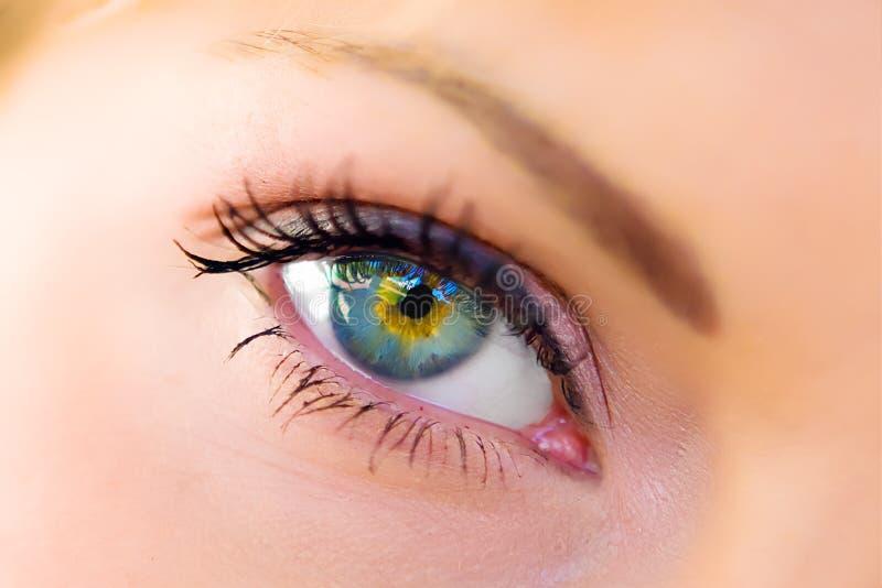 Le macro oeil femelle photographie stock libre de droits