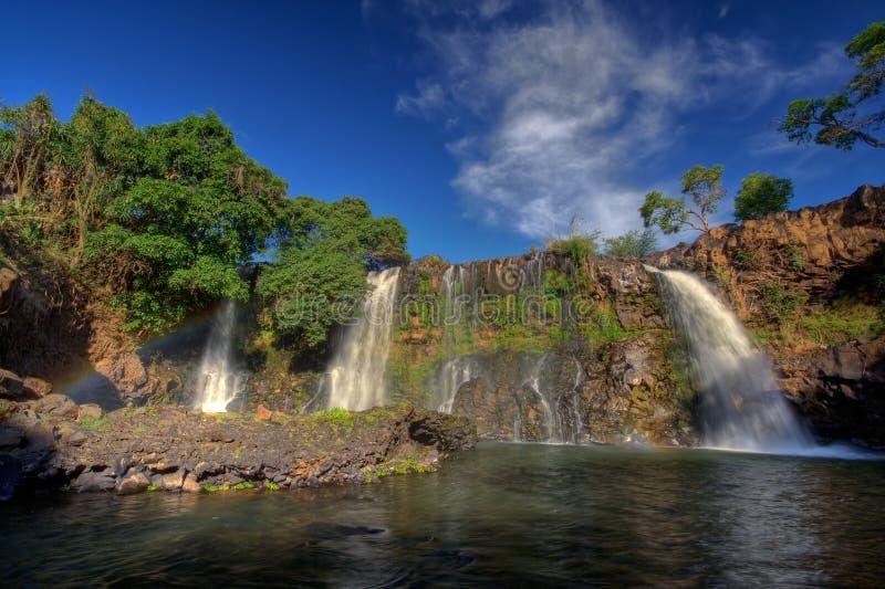 le Madagascar photographie stock