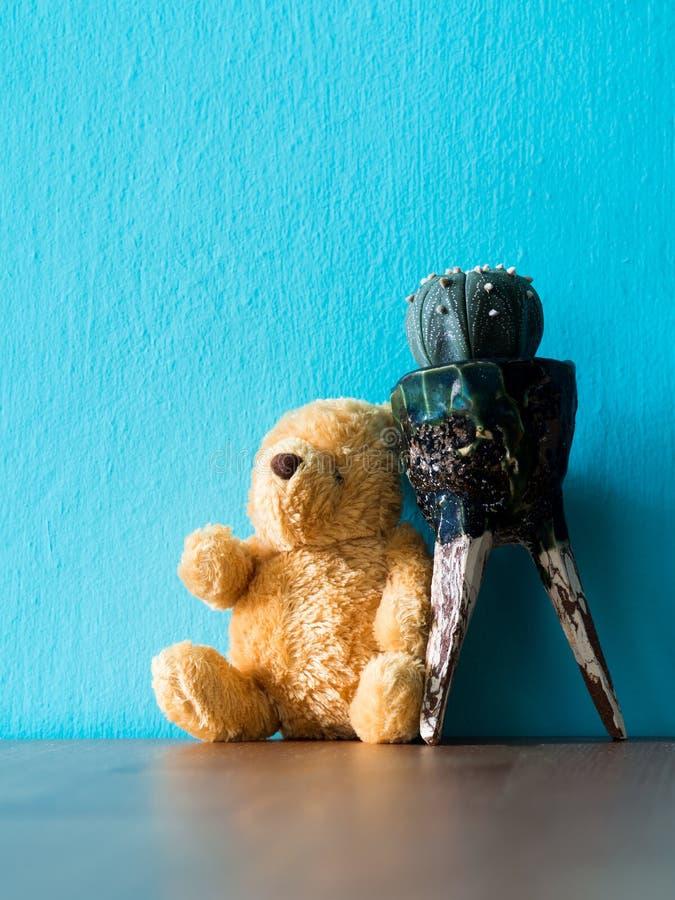 Le maigre brun de séance d'ours de nounours sur le cactus sur la table en bois le fond est l'espace de turquoise et de copie pour photos libres de droits