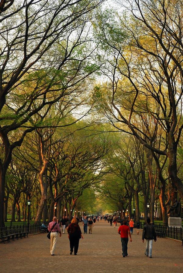 Le mail dans le Central Park une journée de printemps tôt photo libre de droits