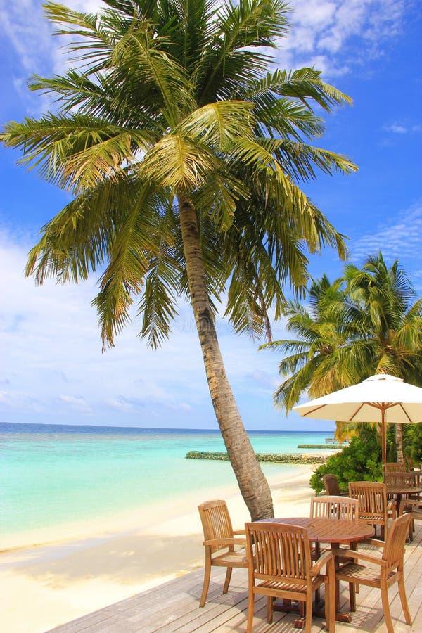 Le Maldive, ristorante tropicale della barra della spiaggia fotografia stock