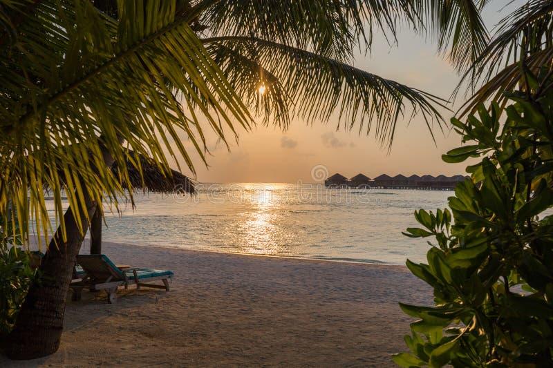Le Maldive sopra la vista della spiaggia di tramonto dell'acqua fotografia stock libera da diritti