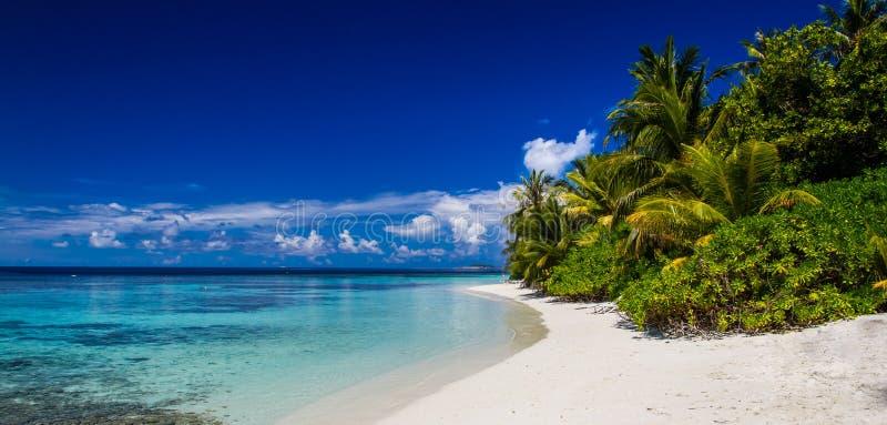 Le Maldive tirano il panorama in secco, cielo blu, barriera corallina immagine stock libera da diritti