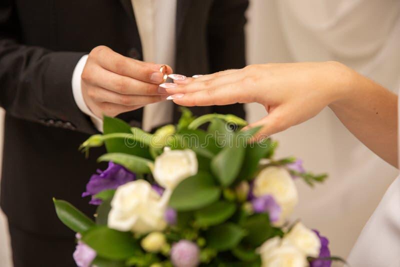 Le mani con gli anelli governano mettere l'anello dorato sul dito del ` s della sposa durante la cerimonia di nozze immagine stock libera da diritti