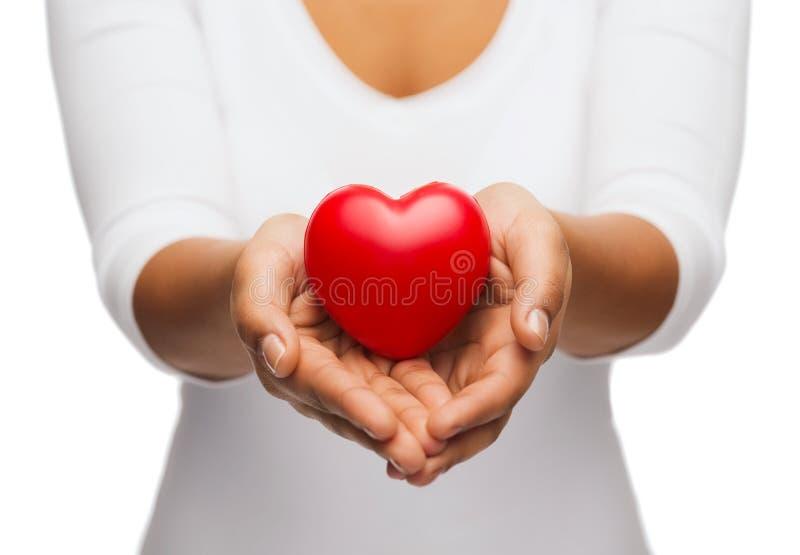 Le mani a coppa della donna che mostrano cuore rosso fotografia stock libera da diritti