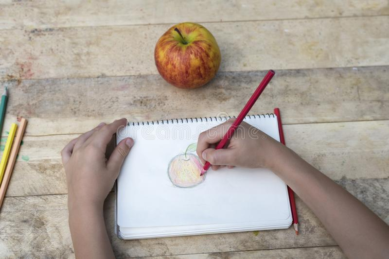 Le mani dei bambini disegnano una mela con le matite colorate Vista superiore fotografie stock
