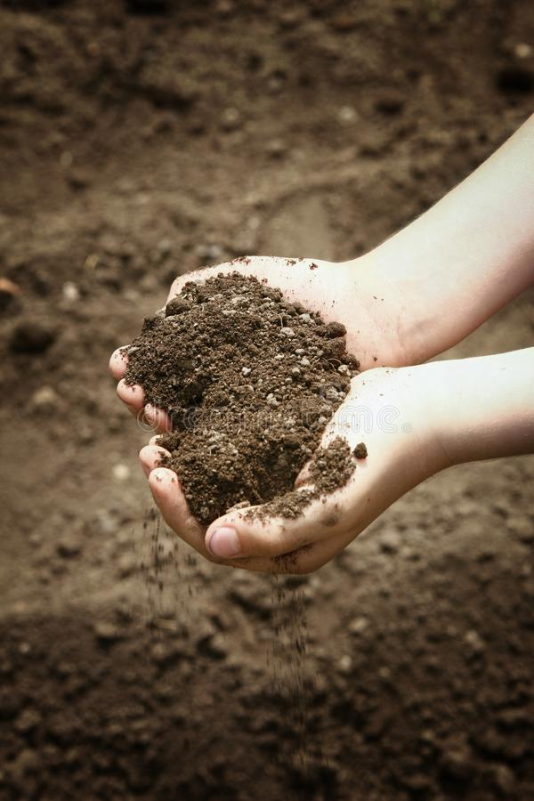 Le mani dei bambini tengono in una manciata di suolo marrone che cade leggermente giù immagine stock libera da diritti