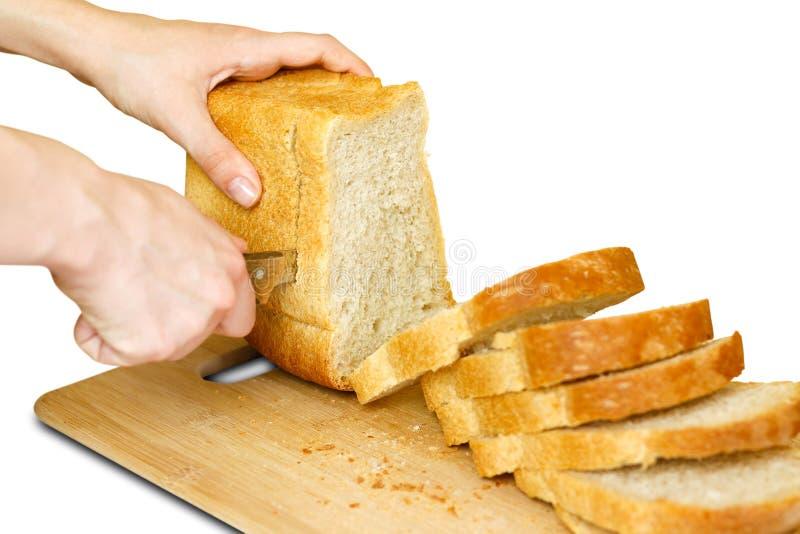 Le mani del ` s della ragazza con un coltello hanno affettato il pane dorato Isolato su bianco fotografia stock libera da diritti