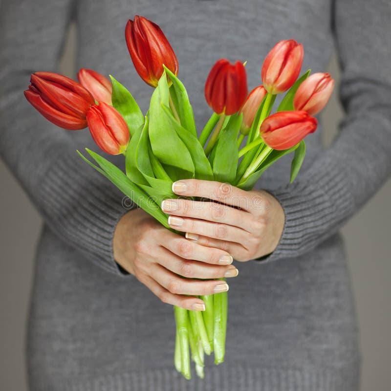 Le mani della donna con arte perfetta del chiodo che tiene la molla rosa fiorisce i tulipani, colpo sensuale dello studio immagine stock libera da diritti