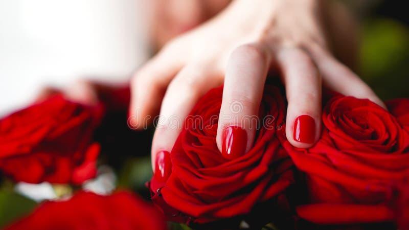 Le mani della donna con rosso del manicure inchioda il primo piano e sono aumentato immagini stock