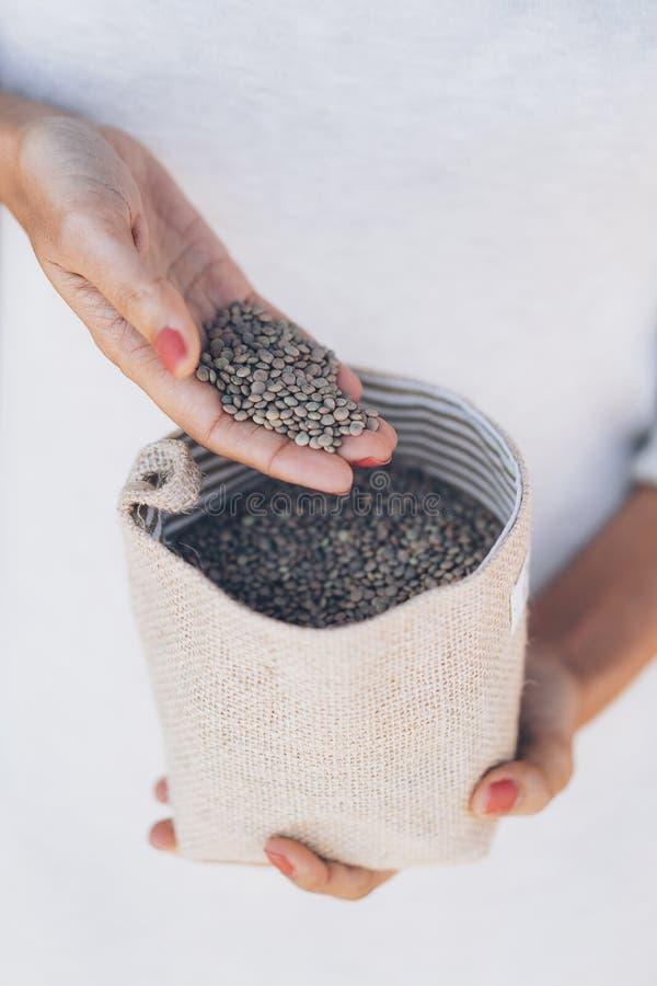 Le mani della donna con una manciata di lenticchie marroni vegetariane immagini stock libere da diritti