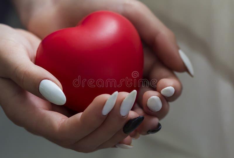 Le mani della ragazza che tengono il cuore rosso, sanità, concetto di assicurazione della famiglia e donano, il giorno del cuore  fotografia stock