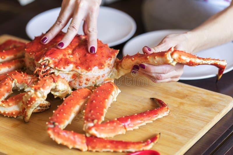 Le mani delle donne sta prendendo la gamba dal grande granchio cucinato rosso per alimento immagini stock libere da diritti