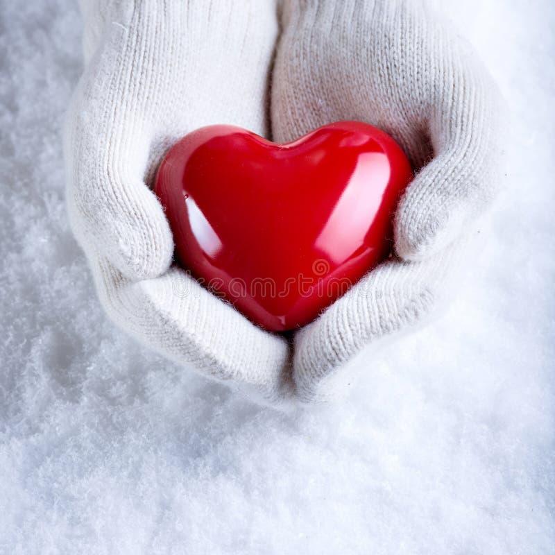 Le mani femminili nel bianco hanno tricottato i guanti con un cuore rosso lucido su un fondo dell'inverno della neve Amore e conc immagine stock libera da diritti