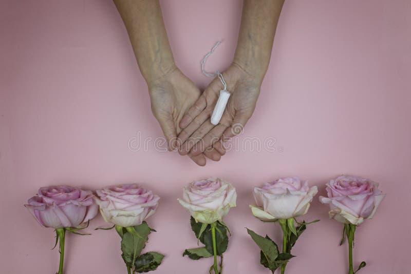 Le mani femminili tengono il tampone igienico Concetto femminile di igiene fotografia stock