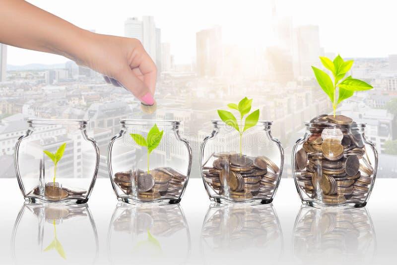 Le mani hanno disposto le monete nel barattolo per risparmiare i soldi, risparmianti per il concetto della casa dell'affare immagine stock