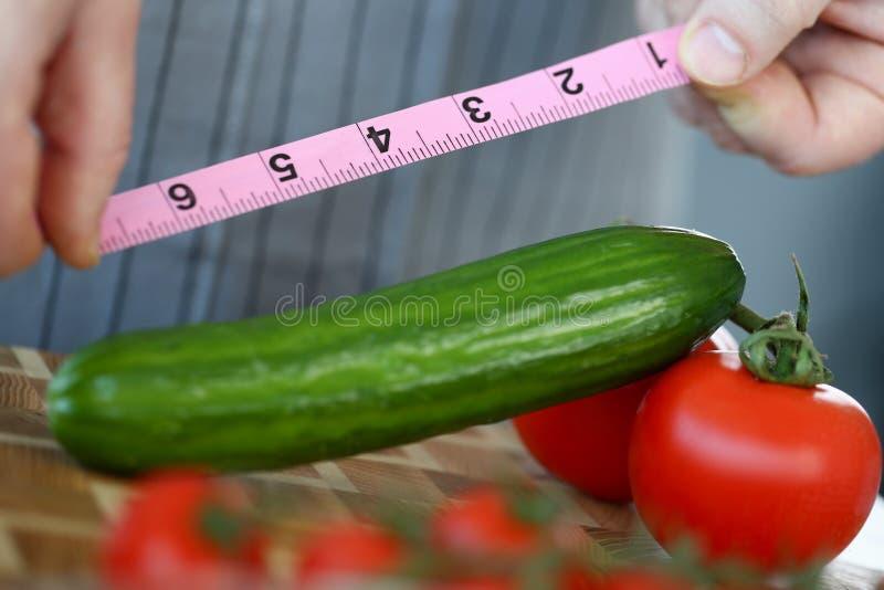Le mani maschii misurano la lunghezza matura verde del cetriolo immagini stock libere da diritti