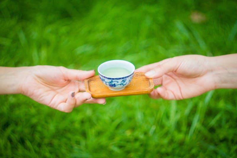 Le mani passano una ciotola di tè fotografia stock libera da diritti