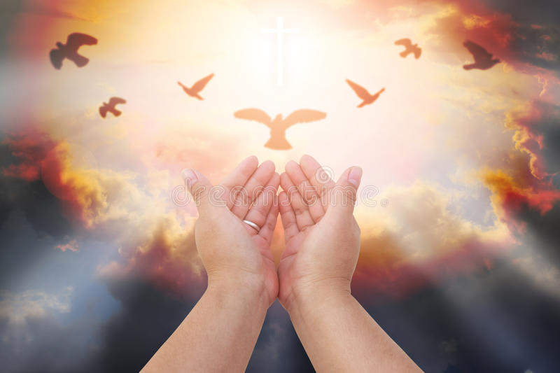 Le mani umane aprono il culto alto della palma La terapia dell'eucaristia benedice Dio lui fotografie stock
