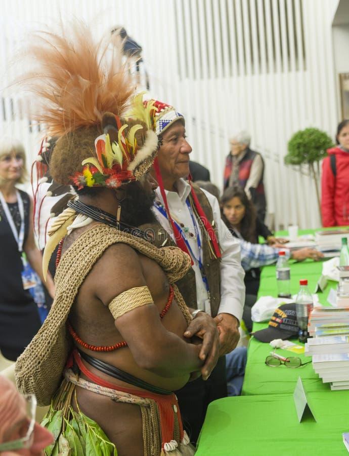 LE MANS, FRANÇA - 9 DE OUTUBRO DE 2016: Masquerader dos homens em um traje indiano colorido na feira de livro imagem de stock