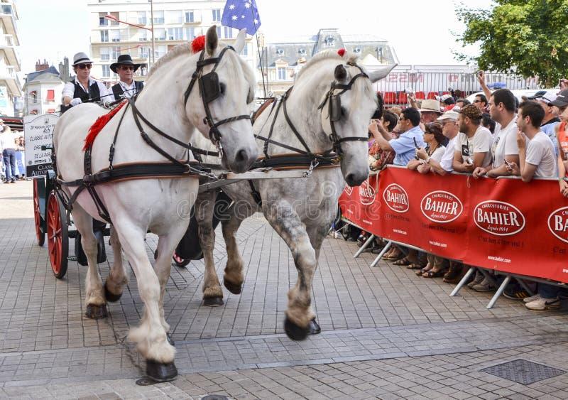 LE MANS, FRANCIA - 13 GIUGNO 2014: Due cavalli bianchi con i cavalieri ad una parata di corsa dei piloti immagine stock