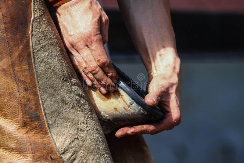 Le maréchal-ferrant tient la jambe de cheval photographie stock libre de droits