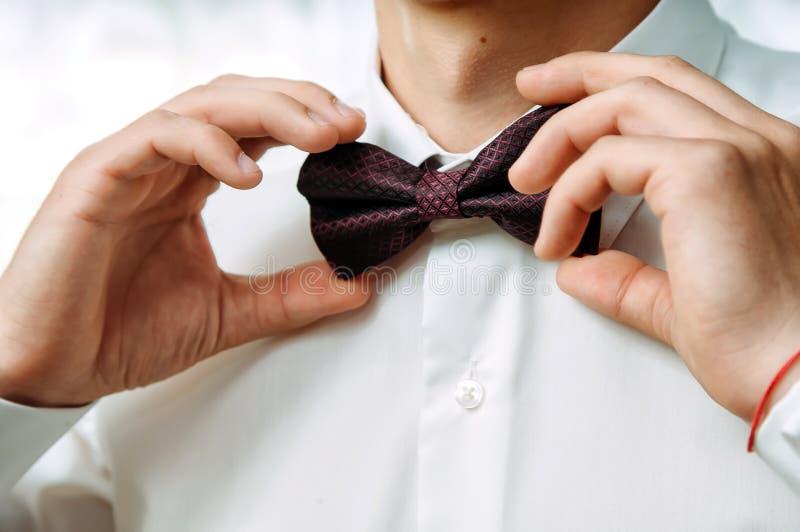 Le marié dans une fixation intellectuelle son noeud papillon photographie stock