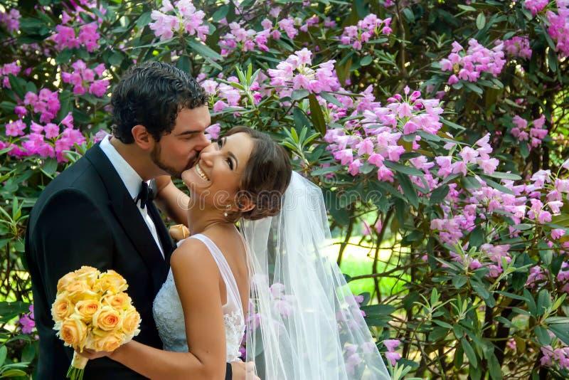 Le marié embrasse sa belle jeune mariée dans sa joue photo libre de droits