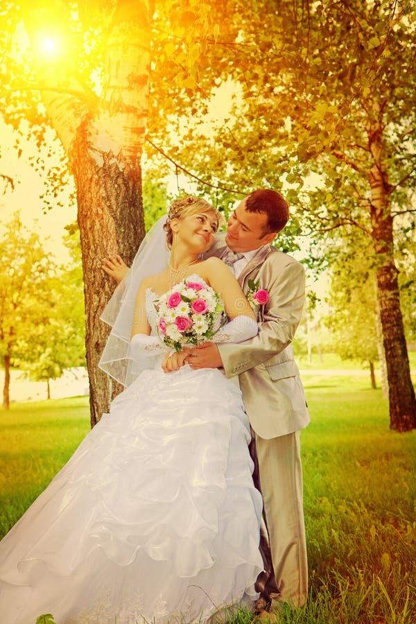 Le marié et la jeune mariée se tenant près du montant d'instagram d'arbre image libre de droits