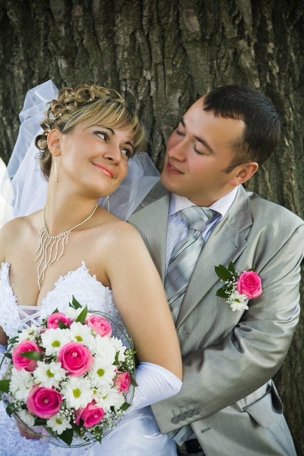 Le marié et la mariée regardent les uns contre les autres photos libres de droits
