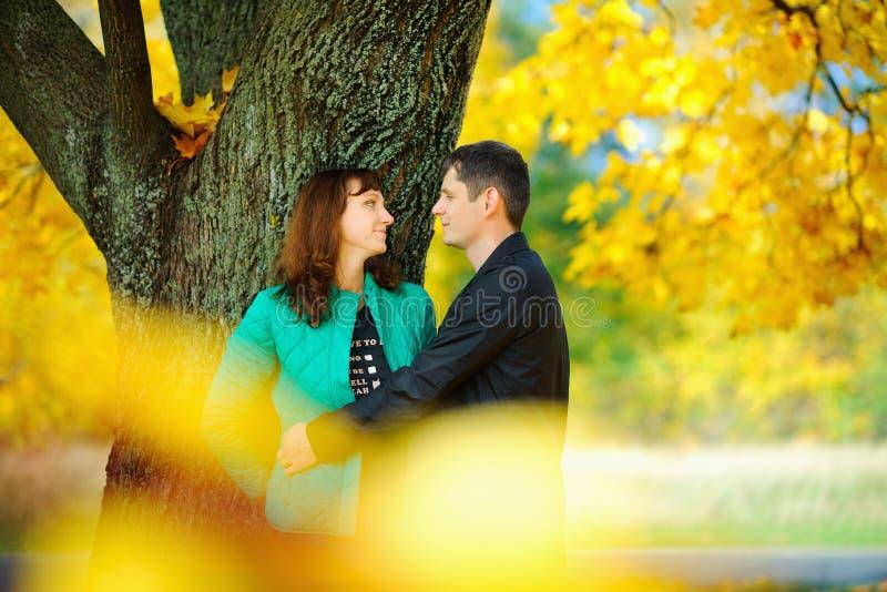 Le mari étreint et embrasse son épouse se tenant sous un arbre images stock