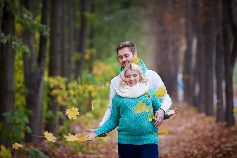 Le mari et l'épouse enceinte marchent en parc d'automne photographie stock libre de droits