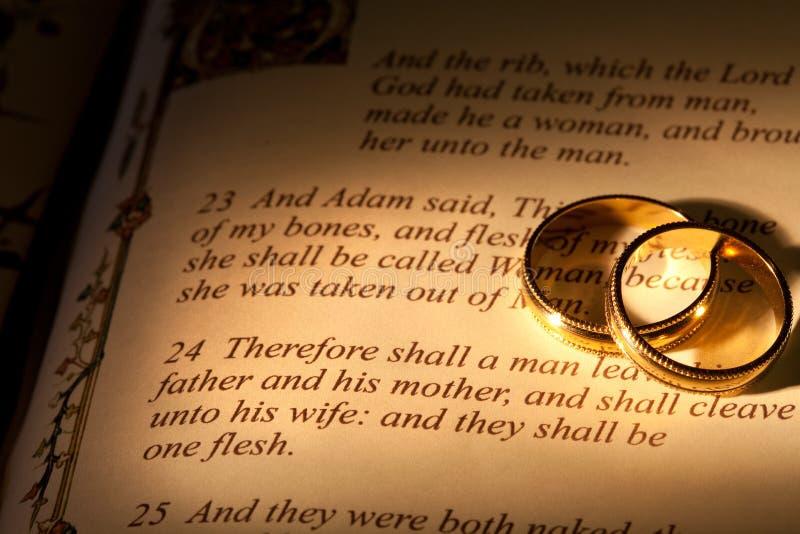 Le mariage d'Adam photographie stock libre de droits