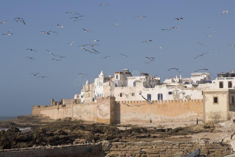 Le Maroc côtier photo libre de droits